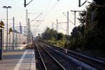 Baiersdorf 14.08.16: Die stillgelegten Gleise 501 und 502 mit den Ausfahrsignalen P501 und P502